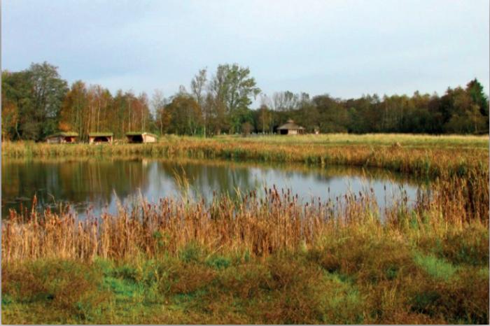 Regnvands sø i Endrup